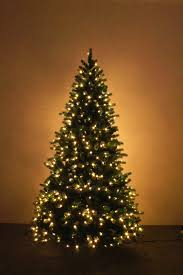 The Ultra Devonshire Pre-lit Fir Tree With Warm White LEDs (4ft to 12ft)