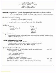 Resume Maker Free Online Fascinating CV Maker Professional CV Examples Online CV Builder Online Resume