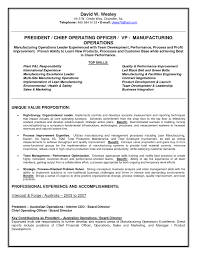 Best Ideas Of Executive Resume International Page 1 For Chief