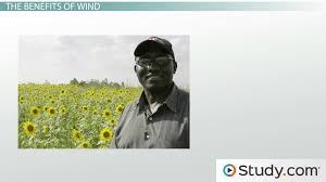 wind as a renewable energy resource advantages disadvantages  wind as a renewable energy resource advantages disadvantages video lesson transcript com