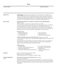 Ad Sales Sample Resume Sample Form Of Resume