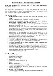 essay plan madrat co essay plan