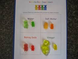 the science of bubbles can you poke a bubble out popping living our homeschool life a balancing act of faith gummy bear experiment