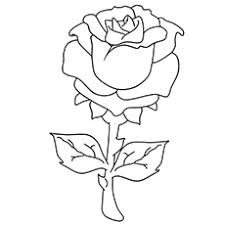 tremendous roses coloring sheets top 25 free printable beautiful rose pages for kids