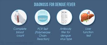 Image result for dengue fever diagnosis and treatment