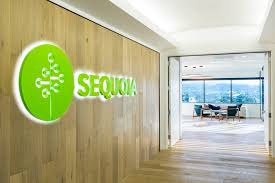 sequoia consulting offices san mateo 1