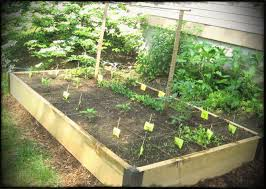 easy and simple diy square foot wood raised bed vegetable gardens with wire trellis ideas garden