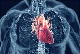 cara mengatasi jantung rematik
