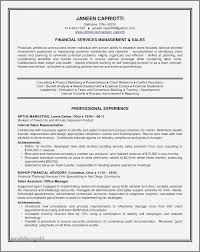 Government Relations Resume Examples Beautiful Great Best Resume
