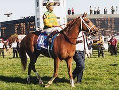 190 Best Kentucky Derby Winners Images Derby Winners