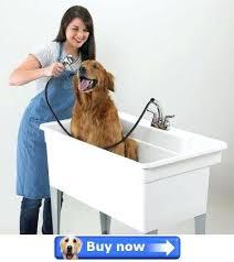 dog bathtub dog bath dog baths for australia dog bathtub