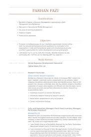 Senior Business Development Executive Resume Samples Visualcv