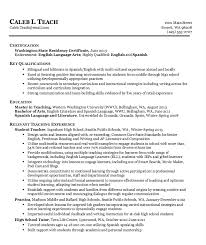Tutor Resume Sample Custom Tutoring Resume Samples Tutor Resume Sample On Sample Resume