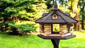 bird feeder designs exclusive wooden dark make and plans ideas wood diy design brief