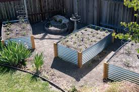 checking out the beauty of the metal raised garden beds from the roof