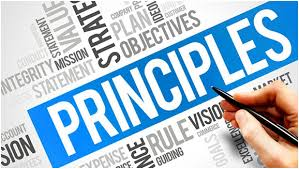 principles of project management assignment help  there is a simple reason for this situation students of course be it any subject want to have a clear idea of things in their own mind