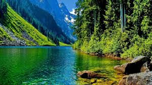 Forest Fun Mountain Cool Lake Nature Backgrounds For Desktop Lakes