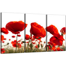 amazing poppy wall art canva set of 3 for your living room display