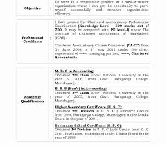 Contemporary Resume Chartered Accountant Fresher Gift