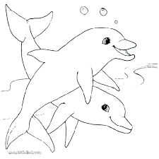 Coloring Pages Of Dolphins Printable Printable Dolphin Coloring