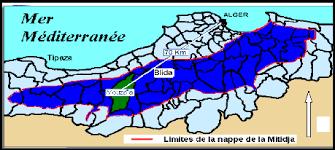 """Résultat de recherche d'images pour """"la plaine de la mitidja avant 1962"""""""
