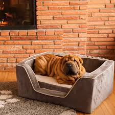 High end dog beds Small Dog Snoozer Pet Products Luxury Square Dog Bed With Memory Foam By Snoozer Pet Products
