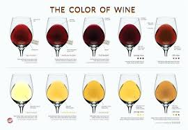 Red Wine Types Chart Types Of Wine Chart Homemadethings Org