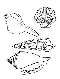 Small Picture Coloring Pages Seashell Sea Shell Eassume Pictures Seashells F