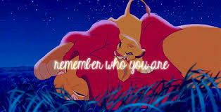 Lion King Love Quotes Delectable Gif Love Animals Cute Quote Disney Quotes Awesome True You Lion King