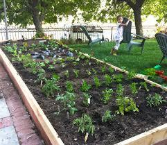 Small Picture Backyard Vegetable Garden Ideas Backyard Design And Backyard Ideas
