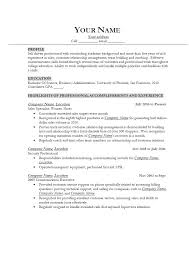 Good It Resume Examples Cool Professional Resume Critique Successful Resume Examples A Good