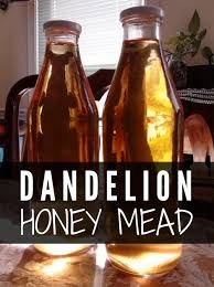 dandelion honey mead a dandelion honey mead is similar to a wine that you can make at home for a beverage which has a great taste and a kick to match