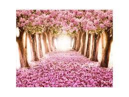 Cherry Blossom Backdrop Aofoto 10x8ft Spring Cherry Blossom Backdrop Sweet Sakura Flower Tree Photography Background Wedding Floral Petal Boulevard Photo Studio Props Girl