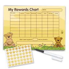 Re Usable Reward Chart With Free Stickers And Pen Teddy Bear