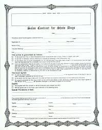 sales contracts sample sales contract form sample contracts pinterest