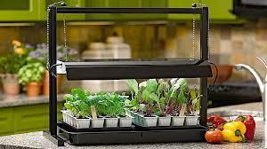 indoor grow lights start seeds best with this easy diy guide