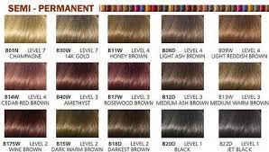Clairol Beautiful Collection Semi Permanent Moisturizing Color B18d Darkest Brown 3oz