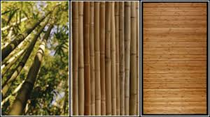 a wide variety of products come from bamboo including furniture cooking utensils fences floors and area rugs shop for bamboo furnishings and bamboo bamboo wood furniture