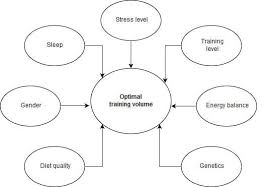 Muscle Recovery Time Chart New Science On The Optimal Training Volume Extreme Training