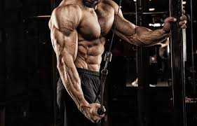 10 best tricep exercises workouts for