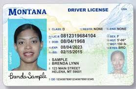 At Issue com Real Politics 406 Of Start Missoulian Driver Licenses Id-compliant Year Next The To Montana