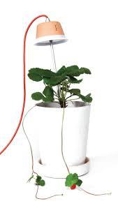 House Plant Led Grow Light Best Led Grow Lights For Indoor Plants Modelight