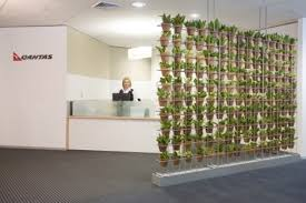 reception areas. Reception Indoor Plants Displays From Ambius Areas