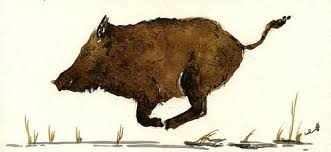 <b>Running</b> Boar Art Print by Juan Bosco | Art, Animal art, Animal ...