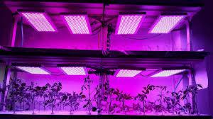 Light Farm Vertical Farm Growing Led Grow Light Youtube