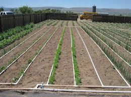 Small Picture Designing a Basic PVC Home Garden Drip Irrigation System very