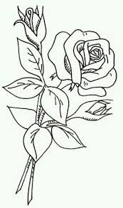 rose line drawing coloring page rose and rosebuds images attach c 10 110 37