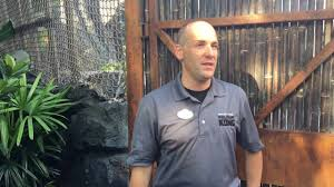 Interview with Adam Rivest on Skull Island: Reign of Kong - YouTube