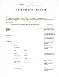 Non Profit Treasurer Report Template Non Profit Treasurer Report Template Best Of 6 Treasurer Report