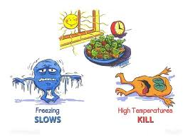 Food Temperature Chart Danger Zone What Is Temperature Danger Zone And How To Avoid Thermopro